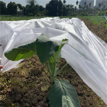 UV resistant weed control 100%polypropylene non woven spunbond nonwoven fabric