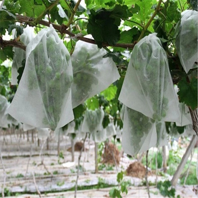 wholesale 100% polypropylene Non woven fabric for agricultural fruit protection banana bag