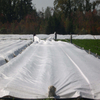 UV 1%-5% Agricultural Crop Cover Extra Wide maximum 36m