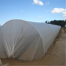 Bio-degradable 100% Polypropylene non woven fabric for agriculture Weed barrier/ weed control